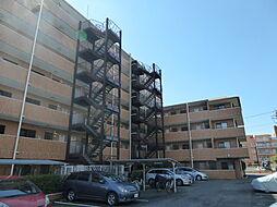 外観(左側7階部分ではなく、右側4階部分の側の建物に当該お部屋はあります)