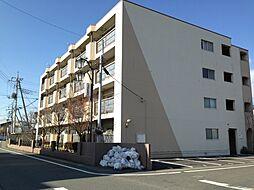 高関コーポ[305号室号室]の外観