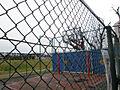 公園やバスケッ...