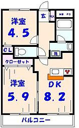 ベルビュー矢切弐番館[305号室]の間取り