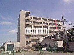 ピーノ ドゥーエ[2階]の外観