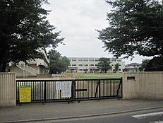 小学校西東京市立保谷小学校まで515m
