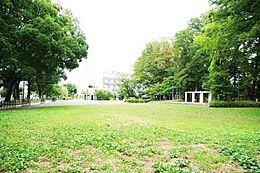 将軍池公園