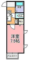 ノーブル桜川[203号室]の間取り