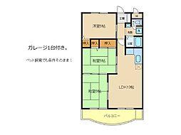 兵庫県明石市南貴崎町の賃貸マンションの間取り