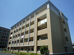 千葉県柏市南増尾1丁目の賃貸マンションの外観