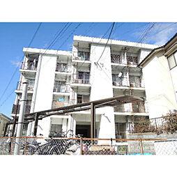 大阪府交野市星田8丁目の賃貸マンションの外観