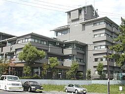 グランドパレス学園前C[4階]の外観