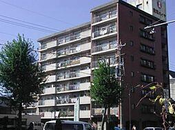 東和ハイツ[3階]の外観