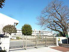 小学校水戸市立石川小学校まで1296m