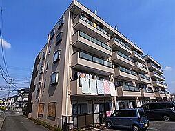 千葉県野田市清水の賃貸マンションの外観