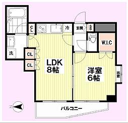 マイキャッスル新高円寺 5階1LDKの間取り