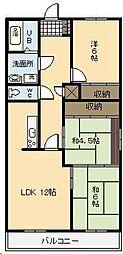 宮崎県宮崎市広島1丁目の賃貸マンションの間取り