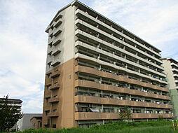 URアーバンラフレ小幡6号棟[10階]の外観