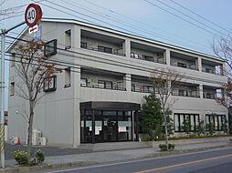 千葉県市原市青柳1丁目の賃貸マンションの外観