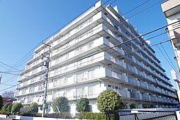 埼玉県川口市大字安行領根岸の賃貸マンションの外観