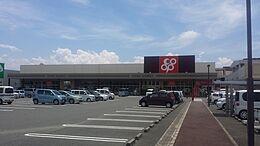 岩出中央ショッピングセンターまで982m