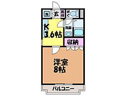 愛媛県松山市枝松4丁目の賃貸マンションの間取り