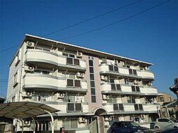 岡山県岡山市中区中井の賃貸マンションの外観