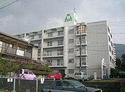 オリエンタル小倉北 205[205号室]の外観