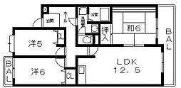 アンリハイツ[305号室号室]の間取り
