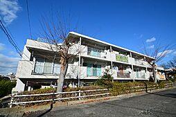 岡嶋グリーンハイツ[3階]の外観