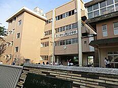 中学校東村山市立東村山第五中学校まで560m