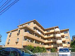 千葉県松戸市松飛台の賃貸マンションの外観