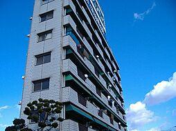 コーポラスサカエ[2階]の外観