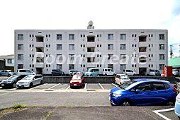 徳島県徳島市沖浜東1丁目の賃貸マンションの外観
