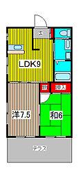 3-SEPIA II[302号室]の間取り