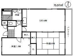 兵庫県神戸市中央区熊内町5丁目の賃貸マンションの間取り
