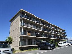 滋賀県栗東市林の賃貸マンションの外観