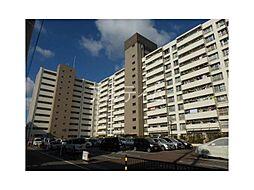 九条住宅[10階]の外観