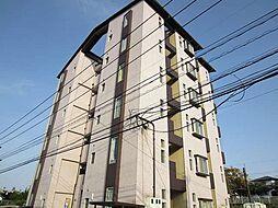 宮崎県宮崎市清武町加納5丁目の賃貸マンションの外観