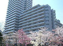 埼玉県川口市川口3丁目の賃貸マンションの外観