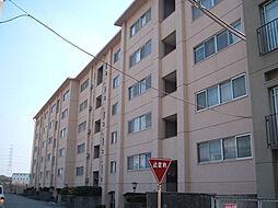 仁川マンション[407号室]の外観