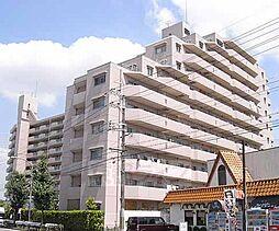 京都府京都市伏見区淀美豆町の賃貸マンションの外観