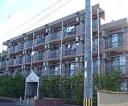 京都府京田辺市興戸南鉾立の賃貸マンションの外観