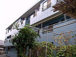 マイネル・ロッジ1[203号室]の外観