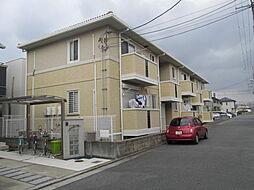 サニーコート津久野[202号室]の外観