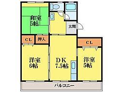 徳島県徳島市住吉4丁目の賃貸マンションの間取り