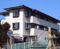 京都府京都市右京区嵯峨釈迦堂藤ノ木町の賃貸マンションの外観
