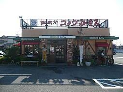 [一戸建] 和歌山県和歌山市大谷 の賃貸【和歌山県 / 和歌山市】の外観