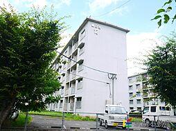 都府楼団地12棟[1255号室]の外観