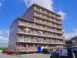 奈良県天理市二階堂上ノ庄町の賃貸マンションの外観