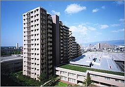 (分譲)ロイヤルアーク甲子園フローレス[13階]の外観