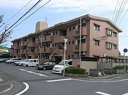 熊本県熊本市南区江越1丁目の賃貸マンションの外観