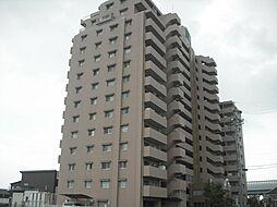 豊田市中田町富士