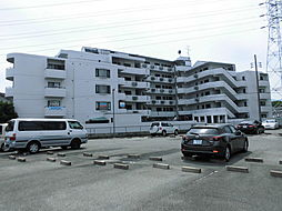 ソレイユ武庫川[503号室]の外観